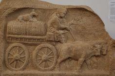Carro trainato da 2 buoi trasporta botti di vino sorvegliate da un cane - da un rilievo funerario - Roemisches Museum - Augsburg