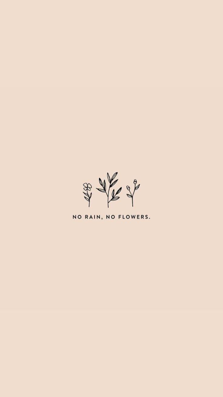 No Rain – No Flowers