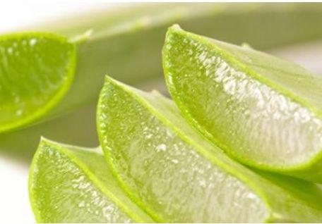 Αλόη.Το φυτικό κολλαγόνο με την βιταμίνη Α.