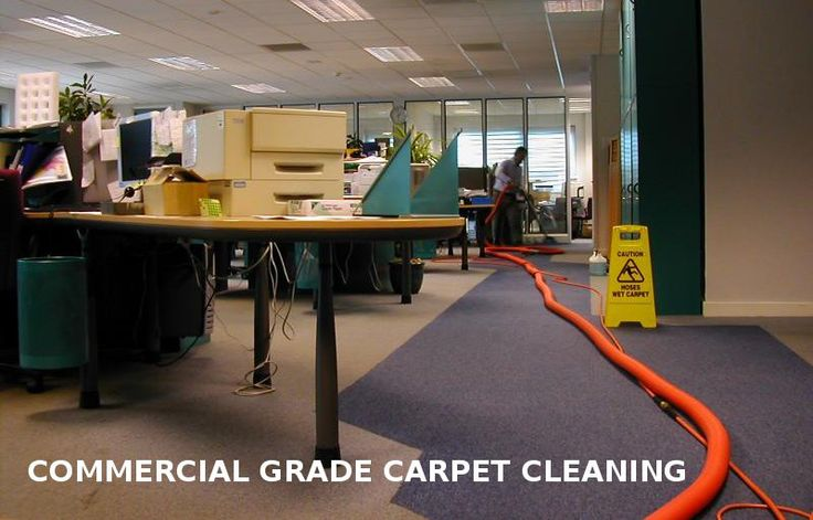 Looking for Commercial Carpet Cleaning services at Sydney?  Steam Care Sydney offer you best Commercial Carpet Cleaning services in your budget. For more info Dial today 0466 903 903 or visit www.steamcaresydney.com.au.