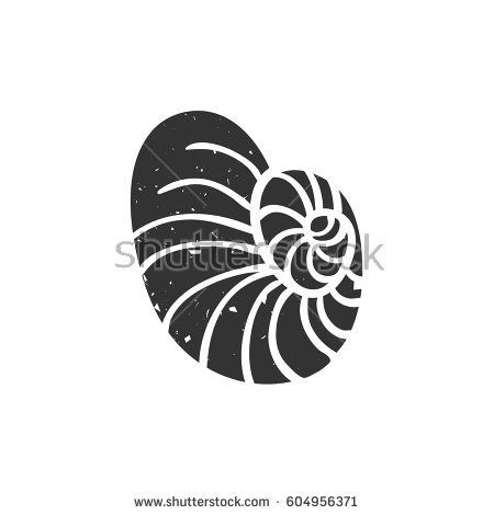 Seashell isolated on white. Vector illustration. Beach concept for restaurant menu card, ticket, branding, logo label. Black and white