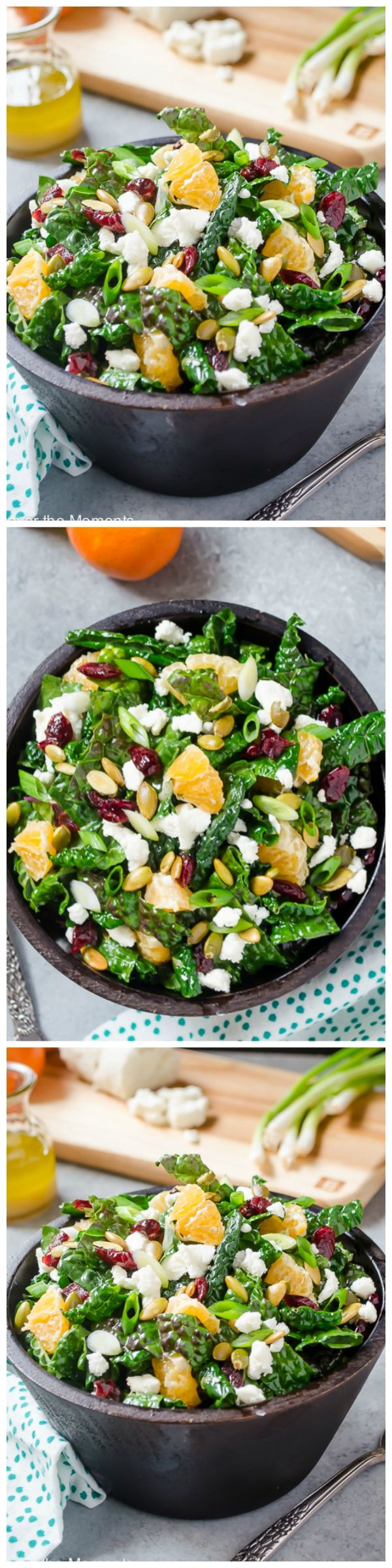 Kale Salad with Goat Cheese, Cranberries, and Orange - Kale Salad with Goat Cheese, Cranberries, and Orange is proof that salad doesn't have to be boring! {GF, Vegetarian}