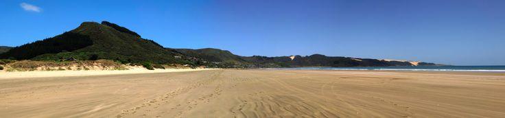 Ahipara from the beach on a sunny summer's day