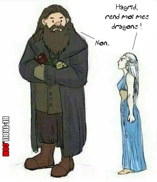 Hagrid et sa passion pour les créatures fantastiques... - Be-troll - vidéos humour, actualité insolite