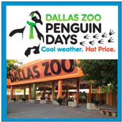 Penguin Days: $5 Dallas Zoo Admission in January & February - www.familyeguide.com