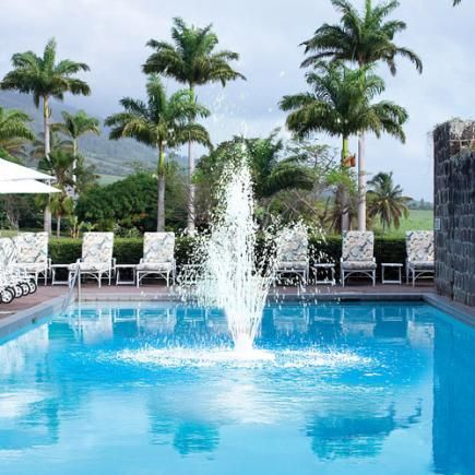 Best 25 Pool Fountain Ideas On Pinterest Backyard Pool Landscaping Pool Water Features And