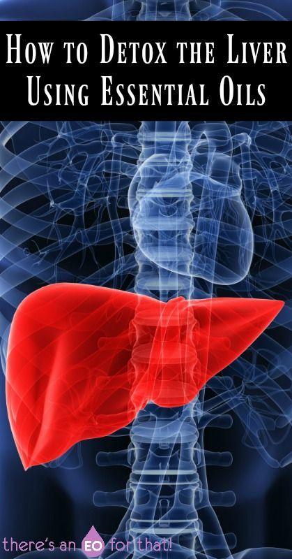 How to Detox the Liver Using Essential Oils - Stimulate bile flow, detox, regeneration, fatty liver reversal, and overall liver health.