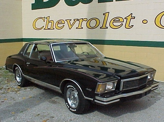 1979 Chevrolet Monte Carlo  ours was silver with black down the center of the hood and 3/4 of the roof.