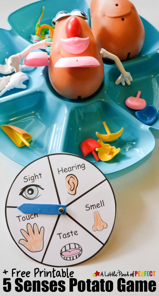 Playing with Mr. Potato Head has always been fun, but with this FREE printable 5 Senses Game it can be educational too! Kids can build a silly looking Mr. P