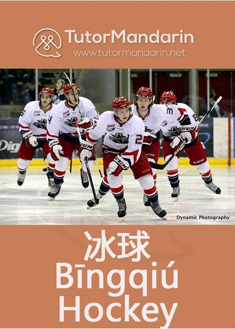 The National Hockey League #NHL presents annual #NHLAwards and trophies to hockey teams and players on Wednesday, June 22nd. #TutorMandarin #ChineseLanguage #LearnMandarin #Languagelearning #tutormandarinflashcards #flashcard #Characters #vocab #chinesevocab #onevocabperday #dailyvocabs