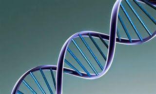 Η ΛΙΣΤΑ ΜΟΥ: Τεστ DNA «θα ανιχνεύει γρήγορα τον καρκίνο»