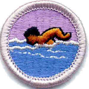 33 best images about Boy Scout Merit Badges on Pinterest   Three ...