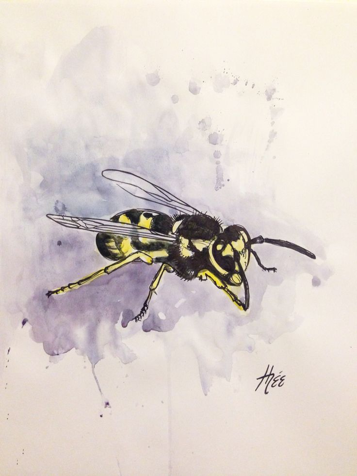 Dessin par Marythée Daigle POLLINISATION #watercolor #aquarelle #drawing #draw #dessin #blackline #illustration #sketch #sharpie #abeille #bee #bees #art #artistofinstagram #sketchbook #beedrawing #artwork #watercolortattoo