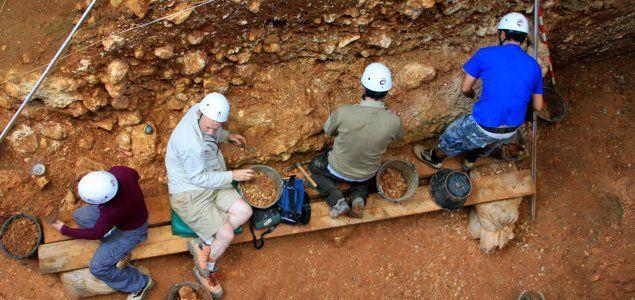 Visita Atapuerca | Museo de la Evolución Humana