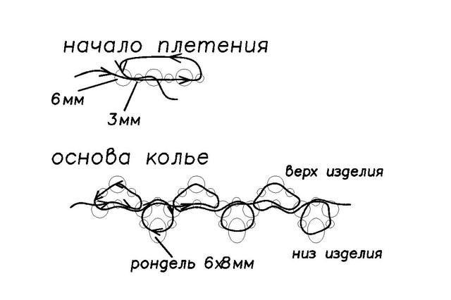 Схема симбиоза1.JPG