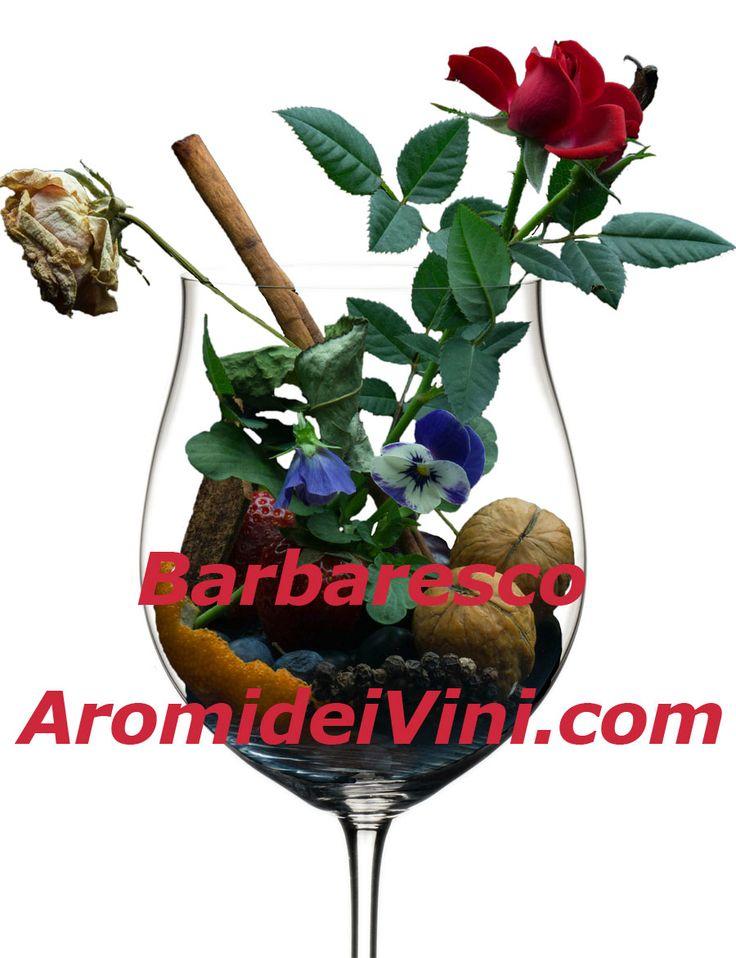 Barbaresco - Piemonte Aroma del Vino - Wine Aromas - Wein Aromen - arome du Vin - Aromi dei vini