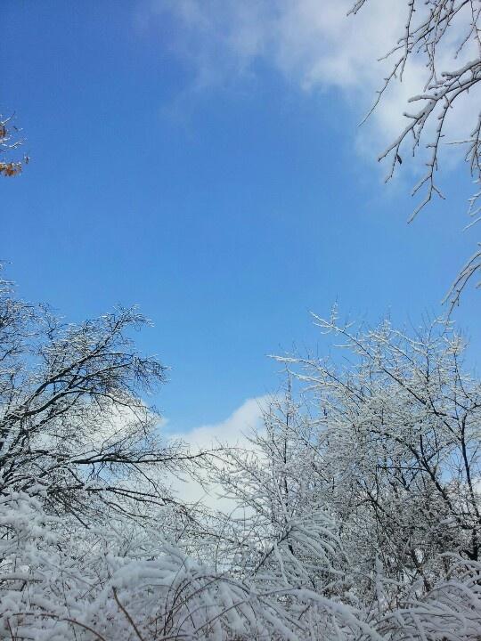 겨울하늘. 일산 호수공원. by 권미영