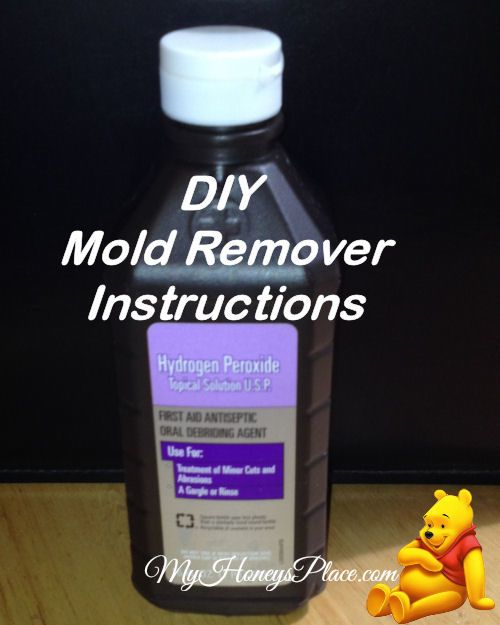 DIY Mold Remover Instructions