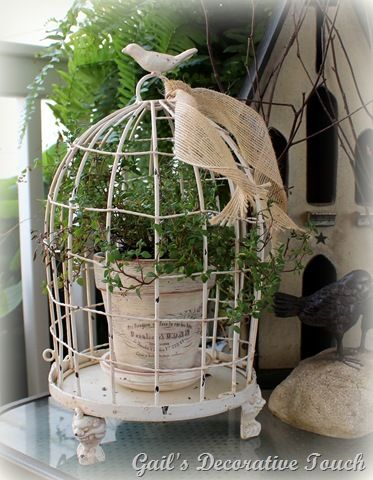 I have this little birdcage on my dining room table. Need to put a potted climber in it. So cute. Birdcage -
