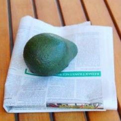 Wie du mit einem Trick optimal reife Avocados erhältst