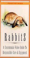 A Simple Rabbit Hutch System
