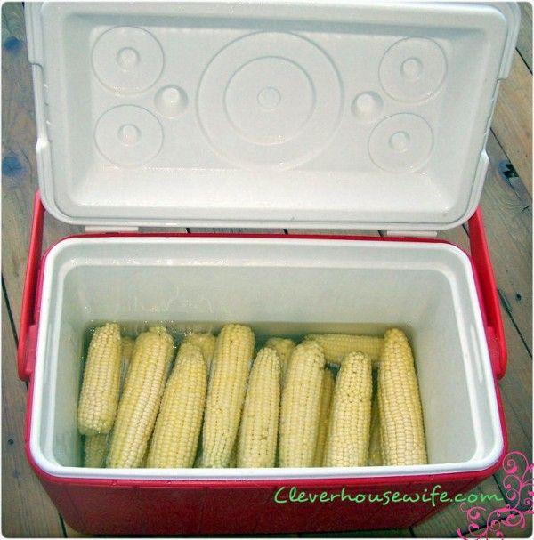 Cooler Corn - Cooking Corn On The Cob in a Cooler for large crowds.