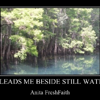 Anita FreshFaith on Peace. Psalm 23:2