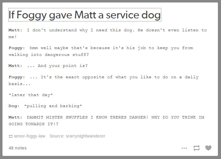 Best thing about this: Foggy named it Mister Snuffles and Matt wENT ALONG WITH IT