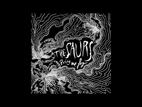 The Saurs | Bring Me Fog [EP 2013] - YouTube