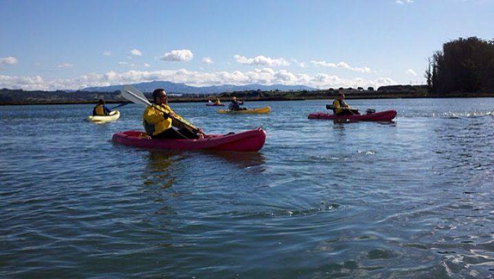 Elkhorn Slough is a beautiful place for kayaking, paddle boarding, and enjoying nature!