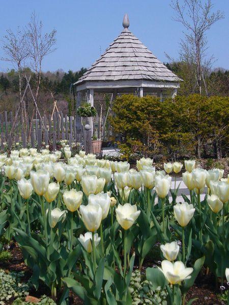 White House Garden Ginga Garden Japan