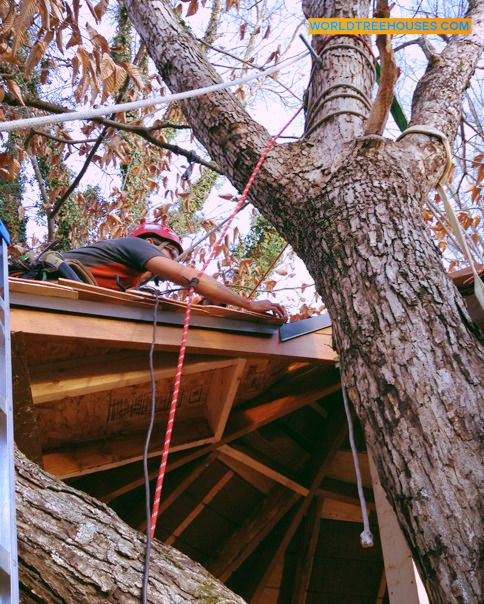 Hold on! Applying shingles to a roof is serious fun when you're 30 feet up and tied to a tree! Adam Laufer of Asheville's World Treehouses recently helped his pal Mike Stam put the finishing touches on his Mars Hill tree house. #AVL #rigging #sustainable #blueridge #mountain #treehouse #mountainlife #WNC #Nature #treelove #cabinporn