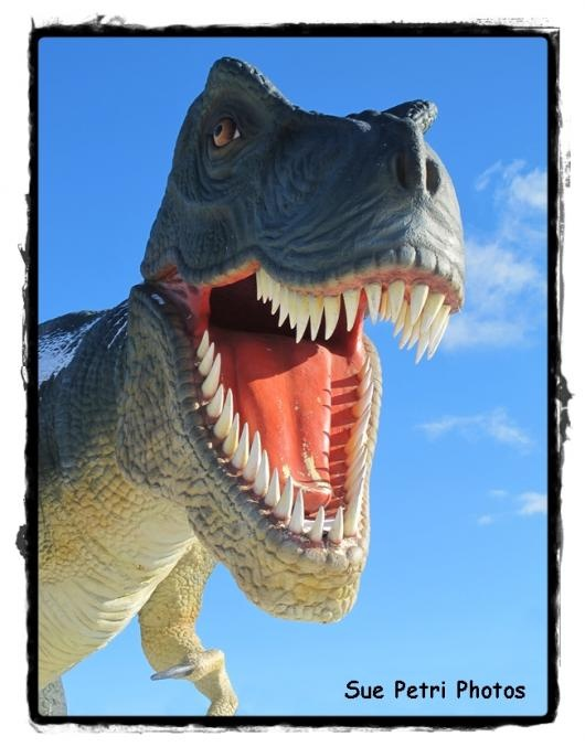 Dinosaur Smile ... from 'SuePetriPhotos' on Lilyshop for $35.00