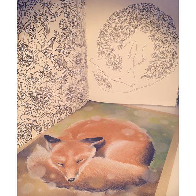 A4 Pastellmalerei niedlichen kleinen Fuchs bekam Inspiration von einem schönen F …   – Vinterhatt