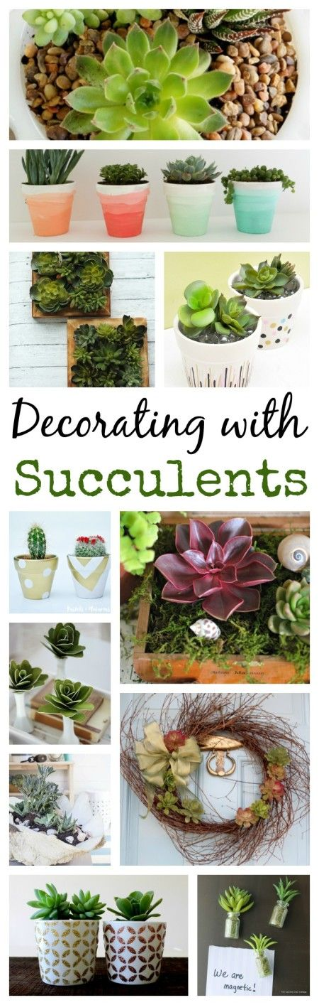 13 Ideas for Decorating with Succulents. Try these plants if you don't have a green thumb.