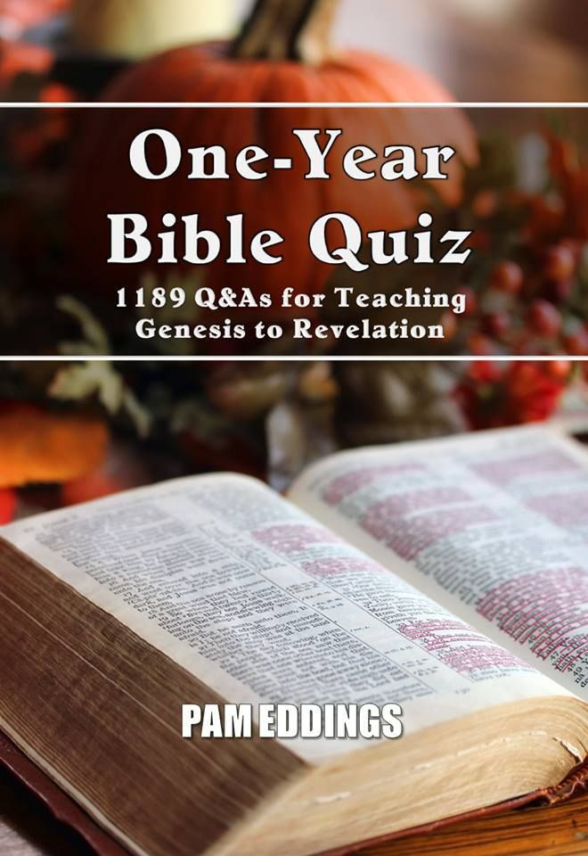Study Questions - Big Picture Bible Study Guides