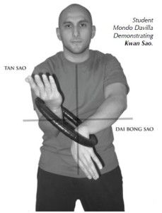 Wing Chun - Chinese martial arts ! how-to-hold-wing-chun-ring-229x300.jpg 229×300 pixels