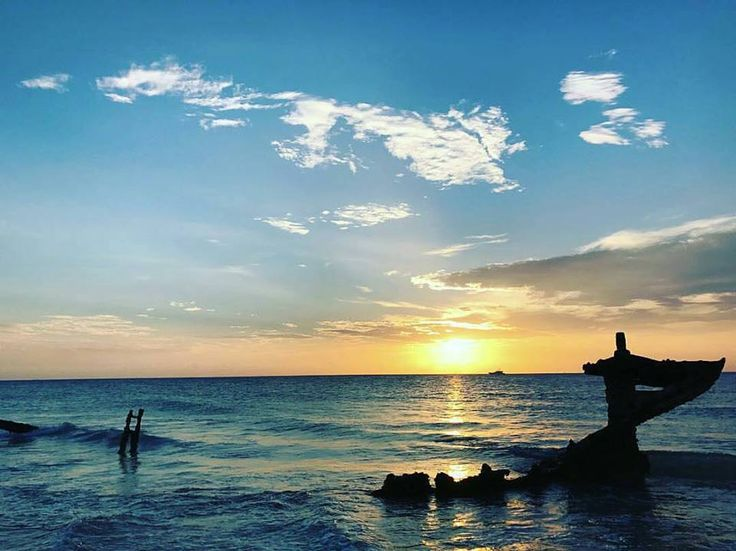 Sunset Safaris offering budgets friendly Great Barrier Reef packages. Operating from Brisbane, Gold Coast & Hervey Bay/Maryborough enjoy your vacation.  http://www.sunsetsafaris.com.au/our-tour/great-barrier-reef