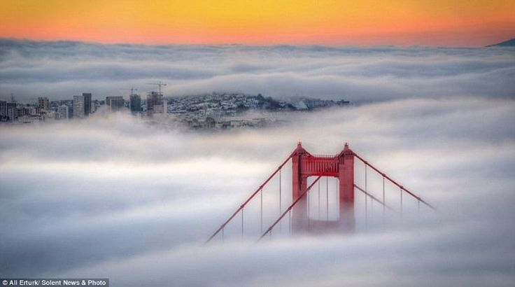Foto Menakjubkan Gedung-Gedung Pencakar Langit di Antara Kabut Awan