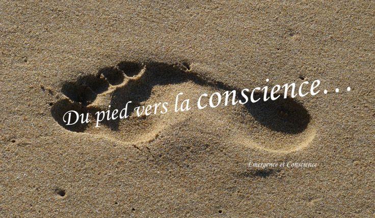 Du pied vers la conscience - formation reflexologie plantaire cosnciente à distance - emergence - conscience