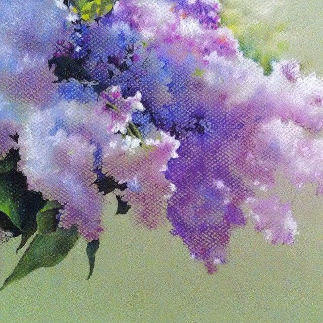 Стадия 2 #рисую #пастель #цветы #сирень #pastel #drawing #xaxalerikart #art #instaart #flowers #wip