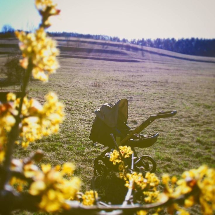 April here we come!  #april #spring #season #weather #family #stroller #pushchair #kinderwagen #passeggino #cochecito #cochebebe #bebe #baby #poussette #concord #concordwanderer @kuboluptak