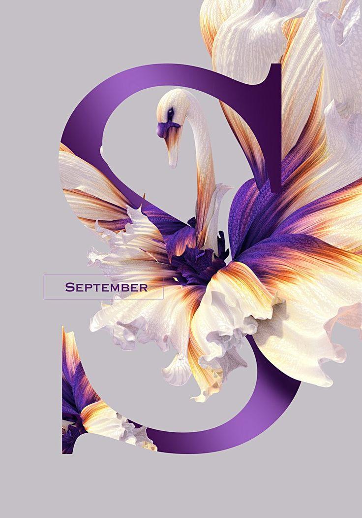Weekly Inspiration for Designers #58 | Muzli blog