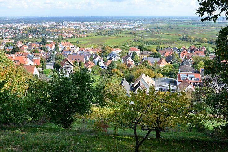 Blick nach Neustadt