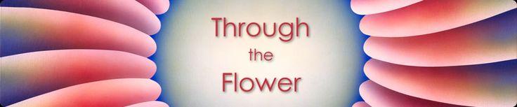 Through the Flower