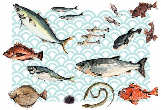 水彩 魚の絵アイデア