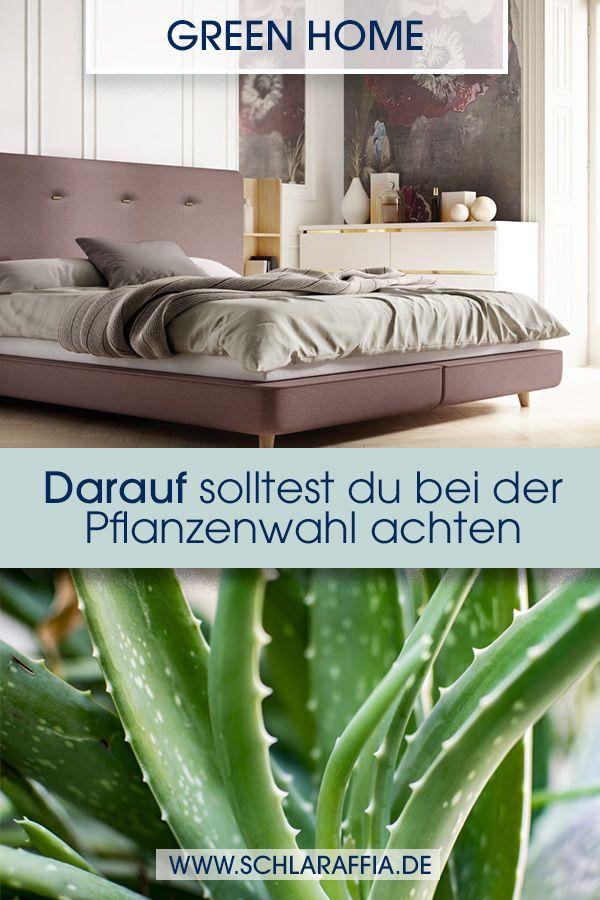 Die Richtigen Pflanzen Furs Schlafzimmer Schlafzimmer Pflanzen Pflanzen Schlafzimmer