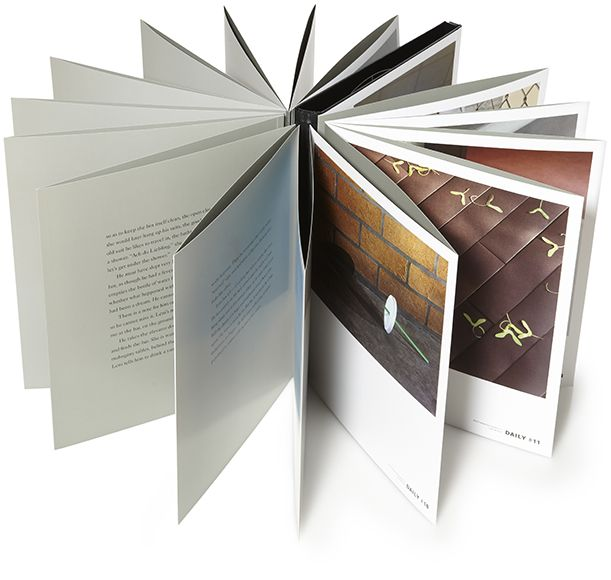 Thomas Demand 'The Dailies'; a book documenting the 25th Kaldor Public Art Project by German photographer Thomas Demand; this book is a concertina and mimics the shape of the building where the pubic art project was located; (click on the book cover to see inside)