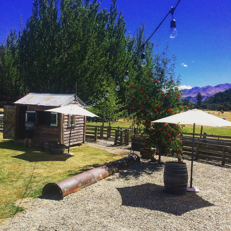 Beautiful day here at Criffel Station Woolshed.