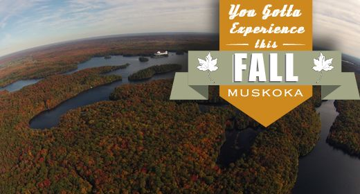Fall is coming! Book your flight now so you don't miss out! 1-800-786-1704